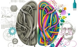 mózg na wyróżnienie