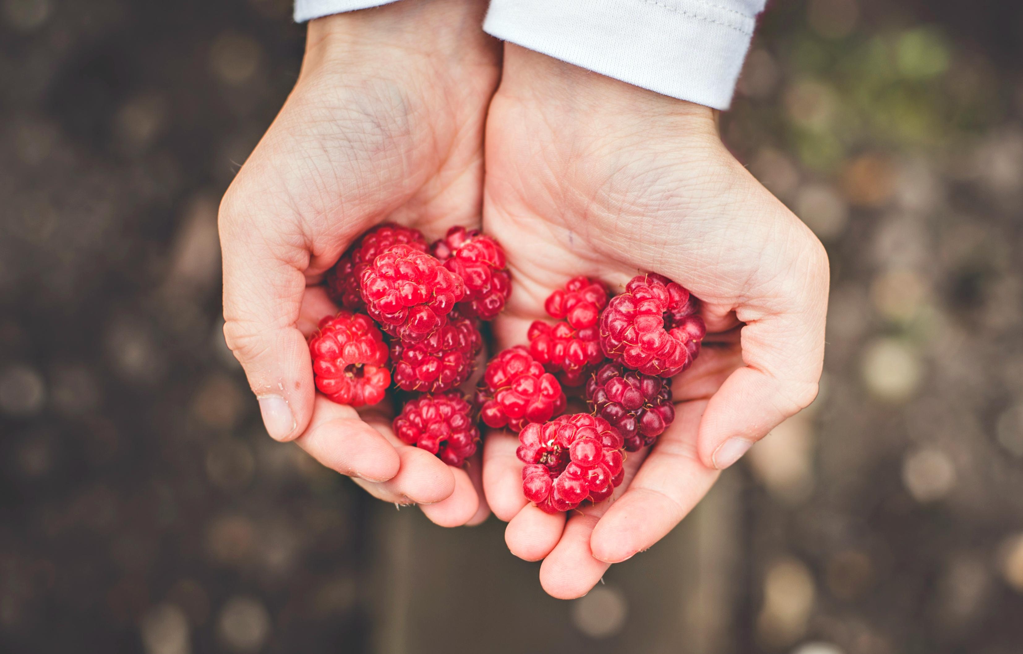 berries-1868310a