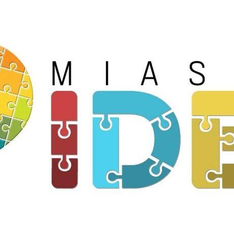 z23113954V,Logo-Miasta-Idei
